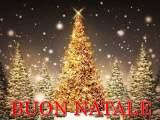 Natale auguri