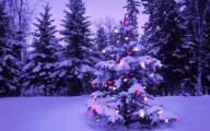 Sfondo immagini natalizie