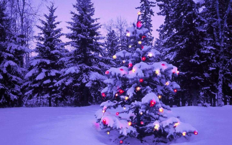 Sfondo Natalizio - Sfondo immagini natalizie